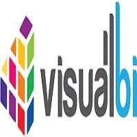Visual BI Solutions off campus