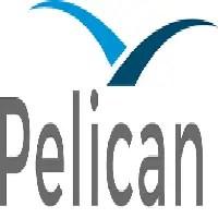 Pelican AI Off Campus