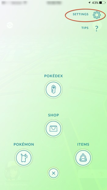 Pokemon Settings in game