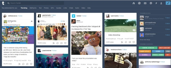 How to search Tumblr effectively3