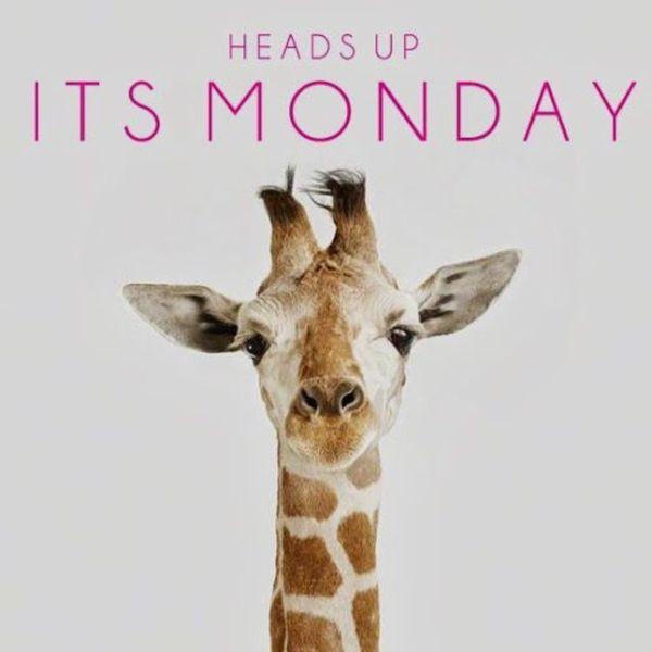 возглавляет понедельник