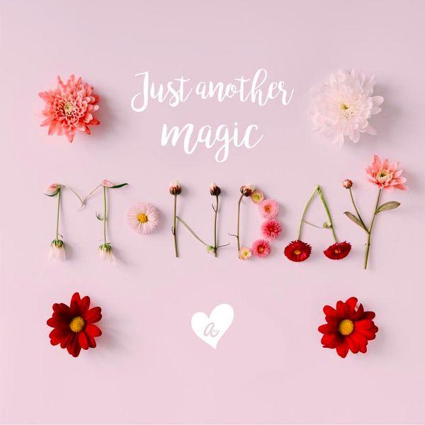 просто еще один волшебный понедельник
