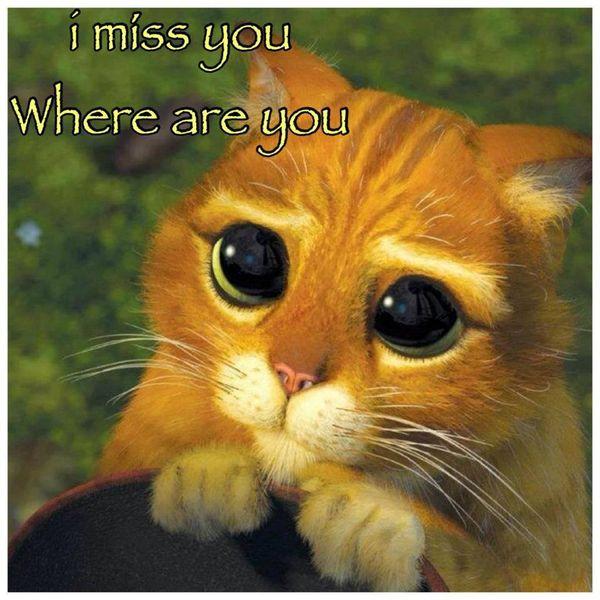 i miss your meme