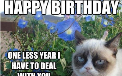 Where To Find Some Genuinely Funny Birthday Memes