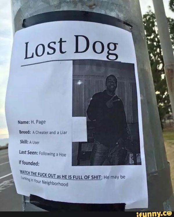 Lost Dog...