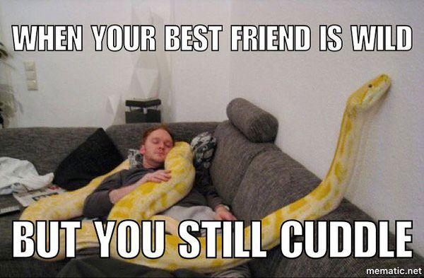 When your best friend is wild but you still cuddle