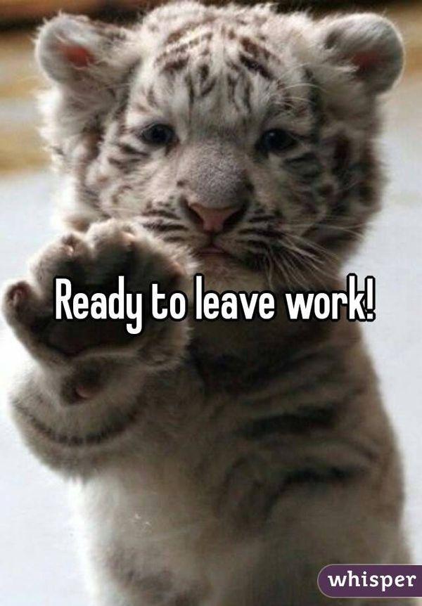 Мем милый готов уйти с работы