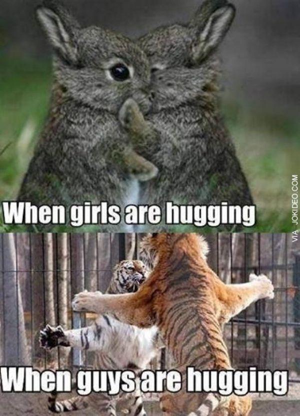 Cool hugging meme