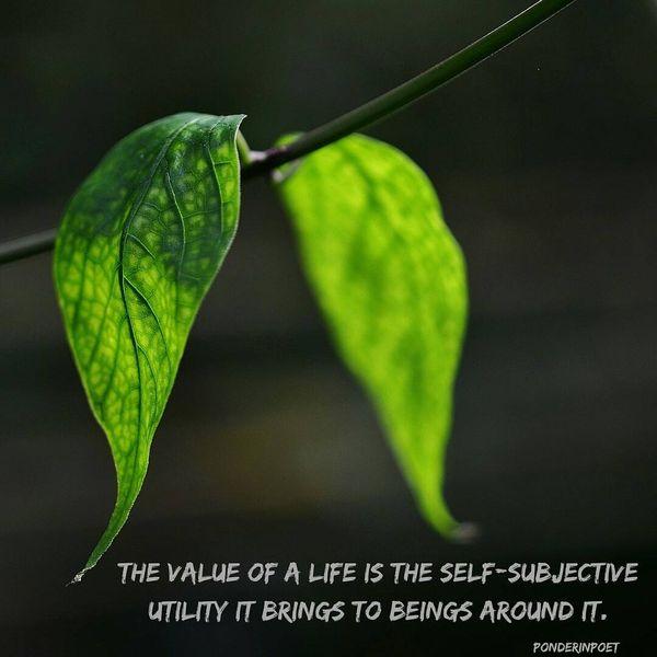 Ценность жизни - это самосубъективная полезность ...