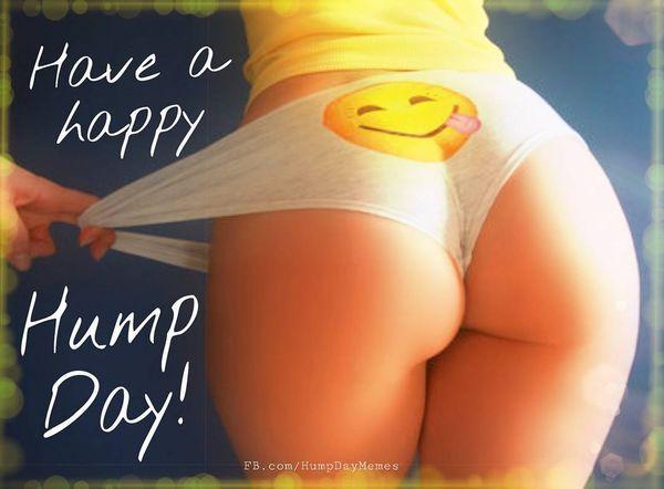 Cool Happy Hump Day Meme 4