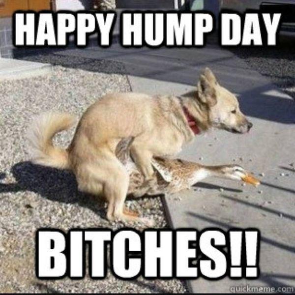Humpback meme dirty but funny 2
