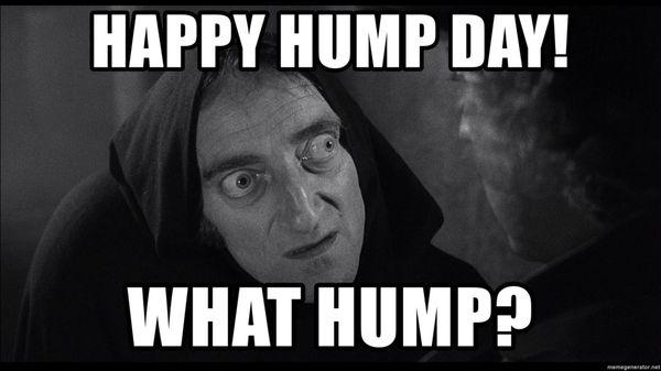 Wednesday bump day funny photos 5