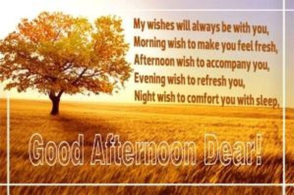 Good afternoon pictures with quotes for your friends and family 2