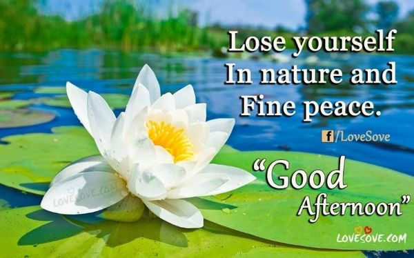 Motivating-and-Effective-Good-Afternoon-Images-with-Quotes 2