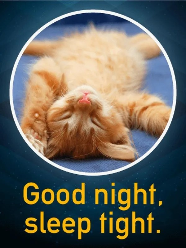 Sleepy Good Night Images for You 2