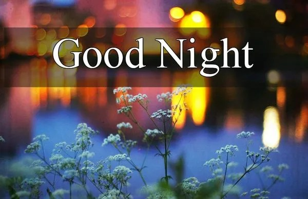Useful Good Night Images with Nice Flowers 4