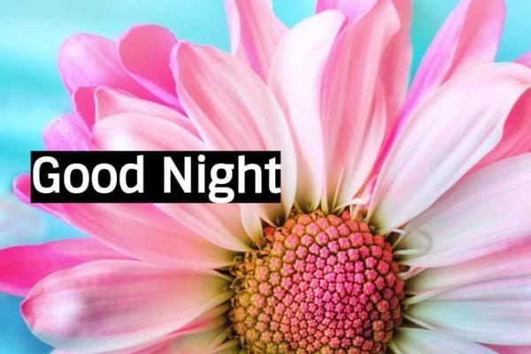 Полезные изображения спокойной ночи с красивыми цветами 7