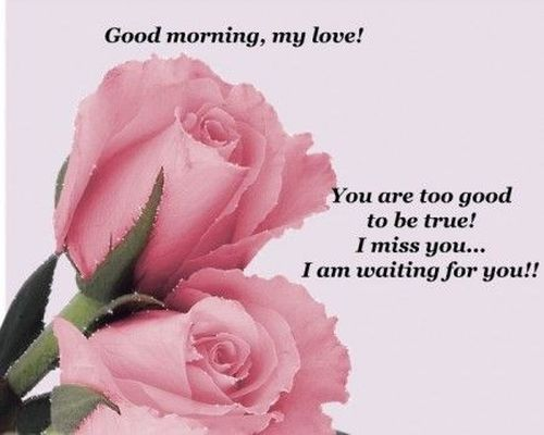 Прекрасное доброе утро для нее