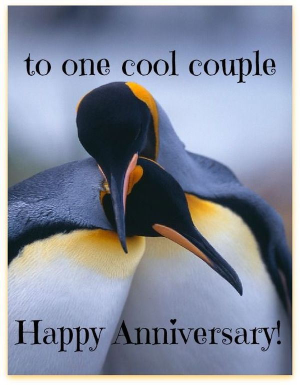 Happy Anniversary Funny Wishes 2