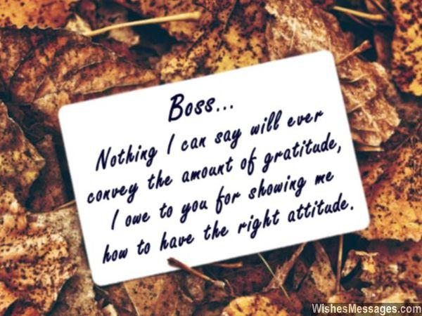 Thank you Boss!!