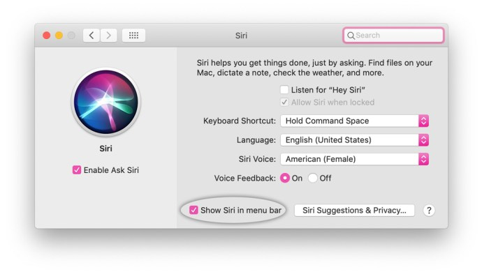 remove siri menu bar