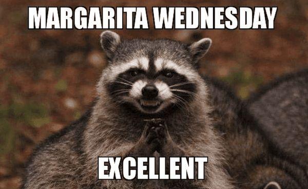 Fun Wednesday Job Meme 5
