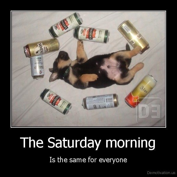 Photos with Saturday humor and Saturday jokes 5