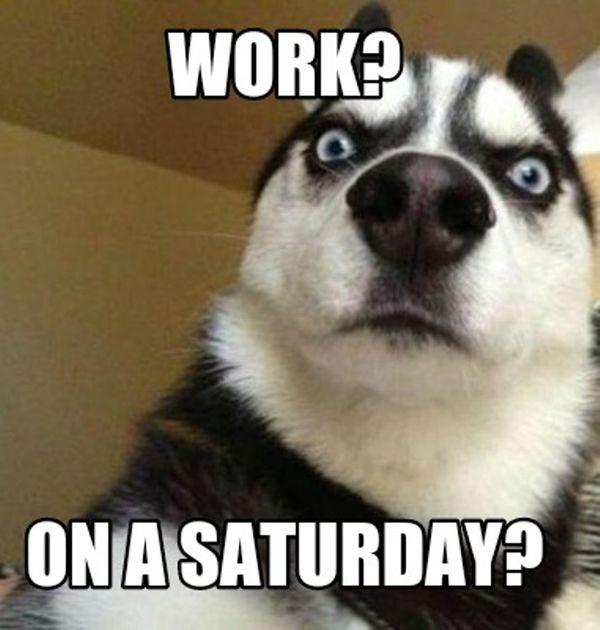 Super funny Saturday memes 6
