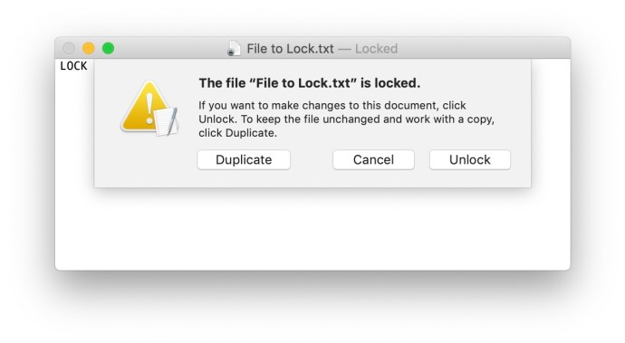 locked file warning