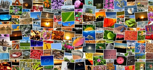 How To Make Photo Collage as Your Desktop Background