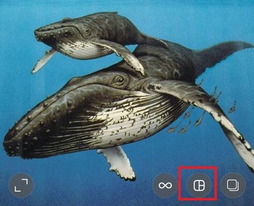 Wie erstelle ich eine Fotocollage als Instagram-Post?