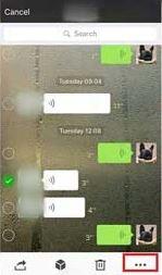 Tap the Three Dot Icon