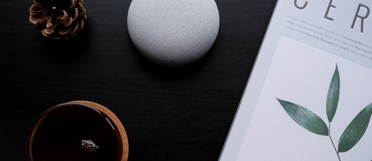 How to delete google home device