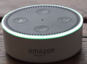 echo dot green