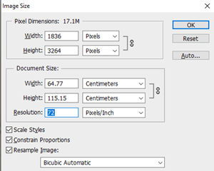 How to Check DPI of Image image size