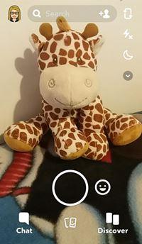 SnapChat Photo Screen