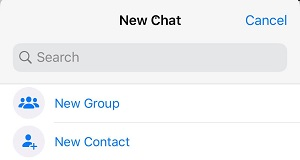 new chat