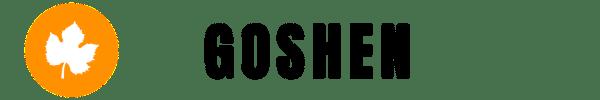 Goshen IT Services