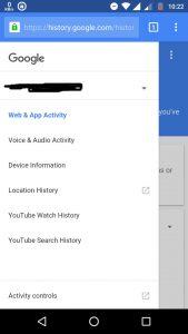 google search option