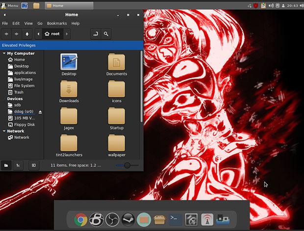 Ecranul rădăcină Linux simplitate