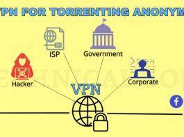 BEST VPN FOR TORRENTING
