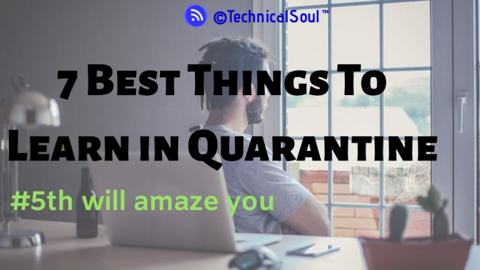 top 7 best things to learn in quarantine