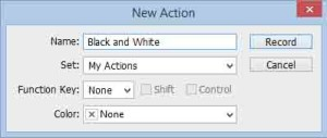New Action dialog box