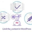 Limit WordPress the_content words