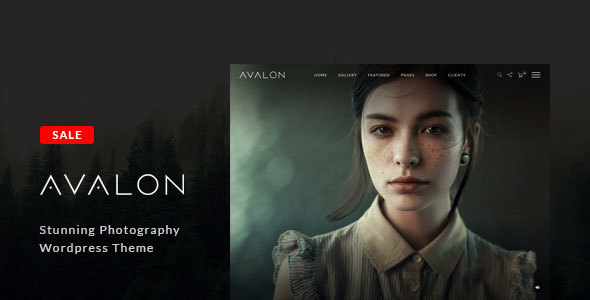 Top 10 WordPress Photography Themes 2017- 09