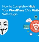 How to Completely Hide Your WordPress CMS Visibility With Plugin