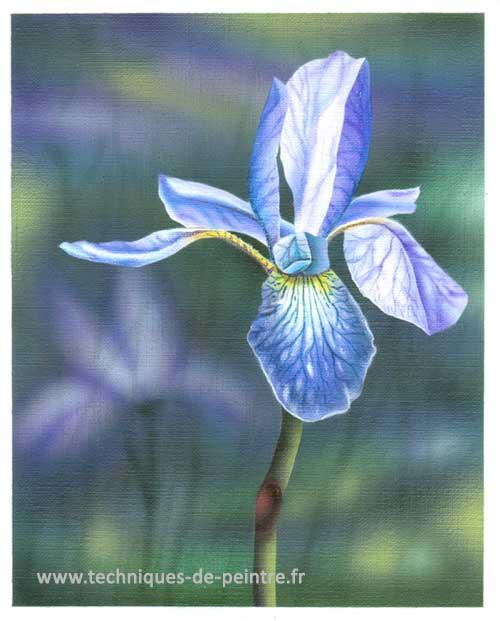 fleur-iris-techniques-de-peintre