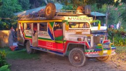 The Jeepney from Puerto Sabang to Buenavista often stops at Jenny's Kahamut-an; as one of the only links to the outside world that runs on some kind of a schedule she can use it to bring in supplies as well as guests!