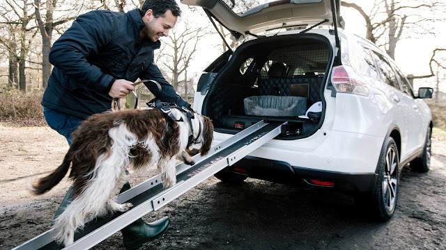 TechnoBlitz.it Nissan: il prototipo X-Trail 4Dogs, l'auto ideale per i cani