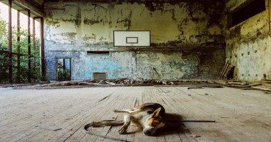 Černobyl'